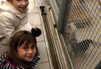Projekt Jsem laskavec - návštěva psího útulku